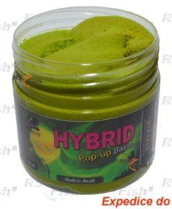 Obalovací pasta LK Baits Hybrid - Nutric Acid