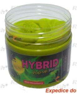 Obalovací pasta LK Baits Hybrid - Wild Strawberry