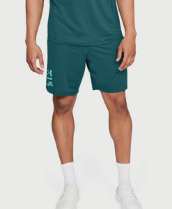 Kraťasy Under Armour Raid 2.0 Graphic Short Zelená